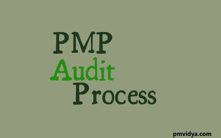 PMP Audit Process