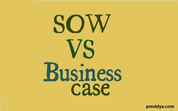 sow vs business case