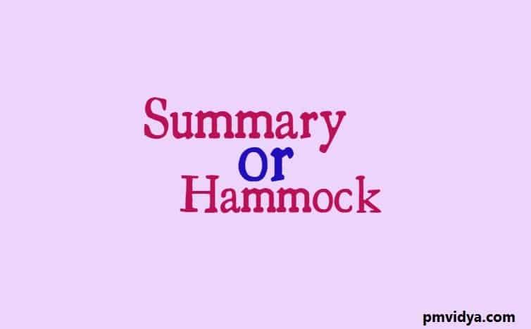 Summary or Hammock activity